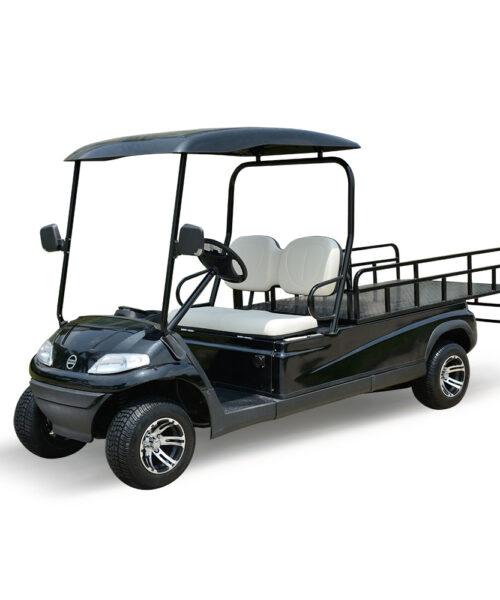 Xe điện chở hàng 2 chỗ LVTONG LT-A627
