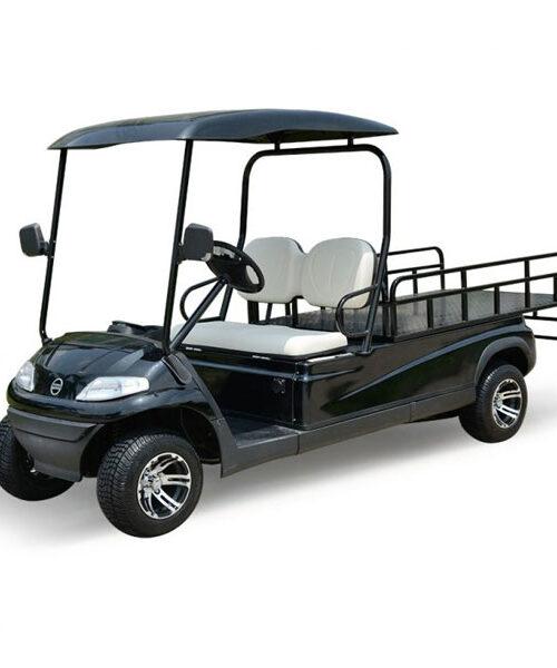 xe điện sân golf 4 chỗ LT-A627.2+2 LVTONG