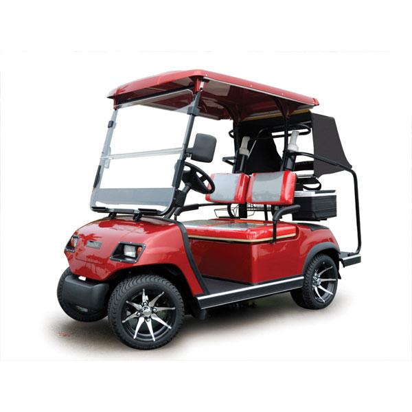 Xe điện sân golf 2 chỗ kiểu dáng A LT-A2