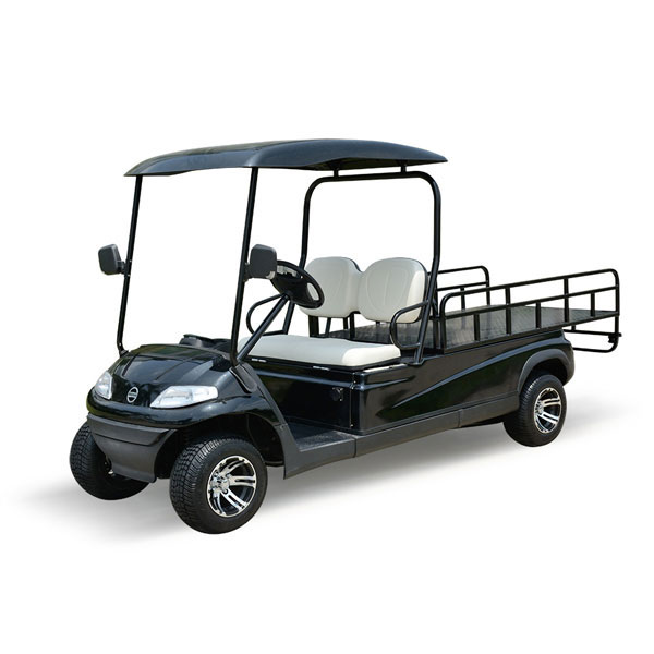 Xe điện kiểu dáng A627 Model LT-A627.2.H8