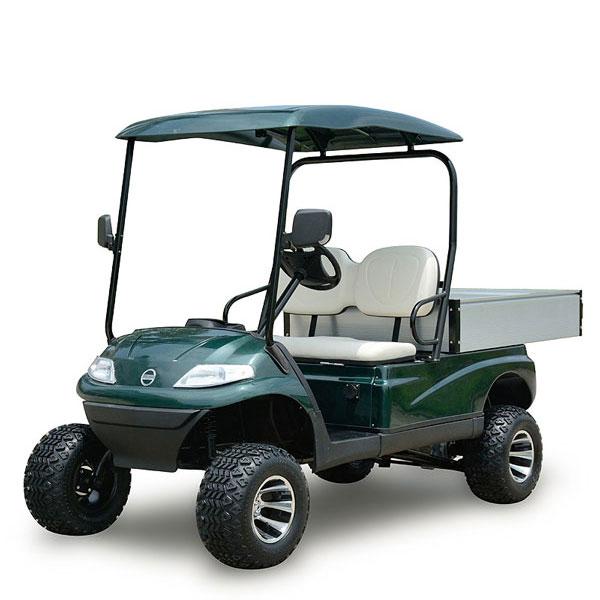 Xe điện sân Golf với sức chứa 2 hành khách