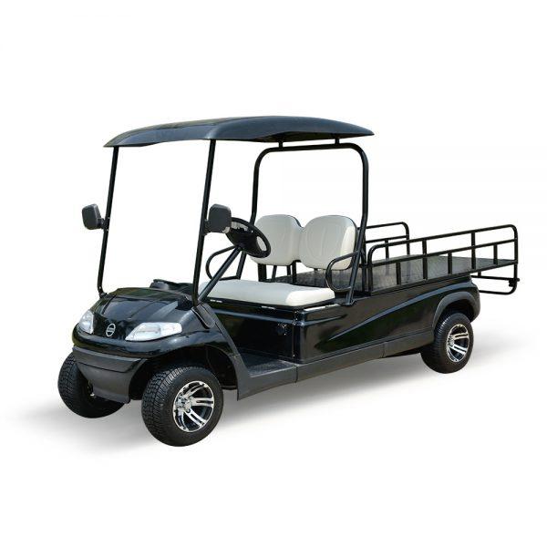 Xe điện chở hàng sân golf 2 chỗ