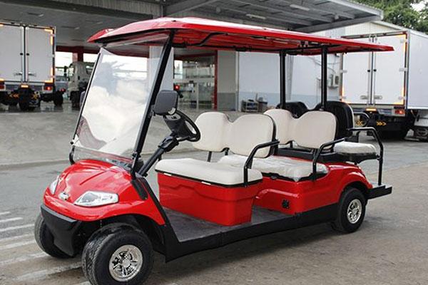 Xe điện buggy Lvtong