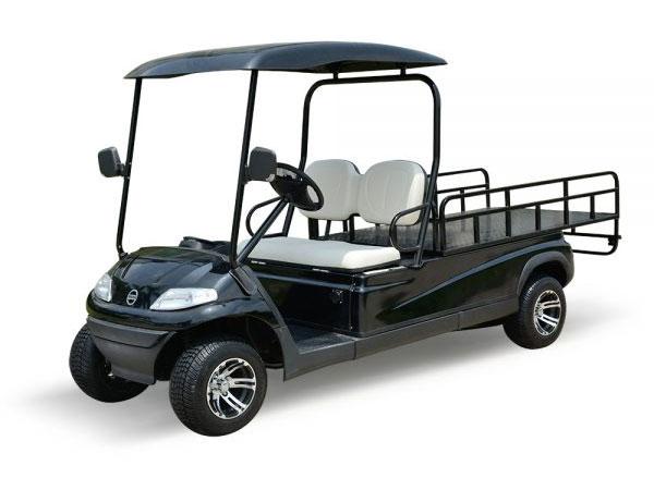 xe điện chở hàng sân golf thùng lửng 2 chỗ