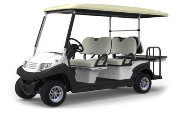 Xe Ô Tô điện Buggy Eagle EG 6248