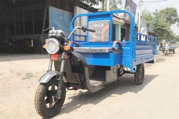 Xe điện 3 bánh chở hàng thông dụng nhất